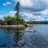 Adirondacks Squaw Lake Shoreline 34 July 2018