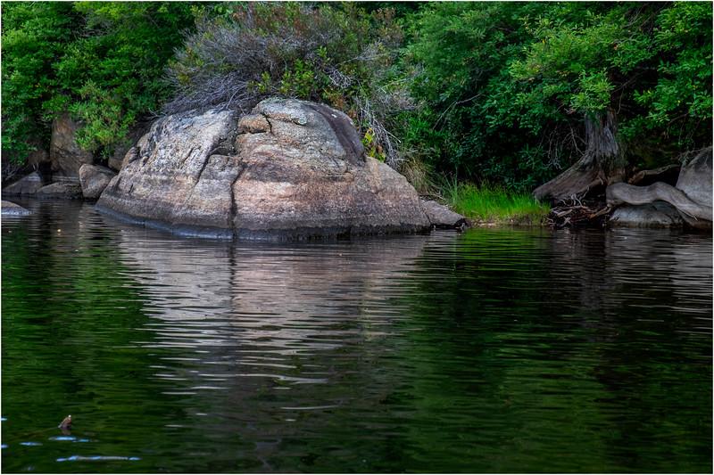 Adirondacks Squaw Lake Shoreline 5 July 2018