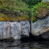 Adirondacks Squaw Lake Shoreline 38 July 2018