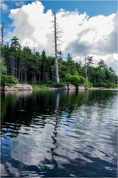 Adirondacks Squaw Lake Shoreline 19 July 2018