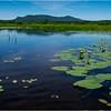 Adirondacks Cedar River Flow Hornbeck Event 10 July 2018