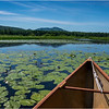 Adirondacks Cedar River Flow Hornbeck Event 11 July 2018