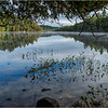 Adirondacks Middle Saranac Lake 63 September 2018
