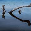 Adirondacks Middle Saranac Lake Weller Pond 2 September 2018