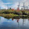 Adirondacks Middle Saranac Lake South Creek 11 September 2018