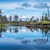 Adirondacks Middle Saranac Lake South Creek 12 September 2018