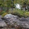 Adirondacks Middle Saranac Lake Weller Pond 7 September 2018