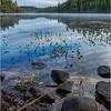 Adirondacks Middle Saranac Lake 64 September 2018