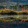 Adirondacks Middle Saranac Lake South Creek 20 September 2018