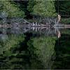 Adirondacks Middle Saranac Lake Weller Pond 44 September 2018