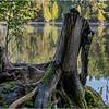 Adirondacks Middle Saranac Lake 5 September 2018