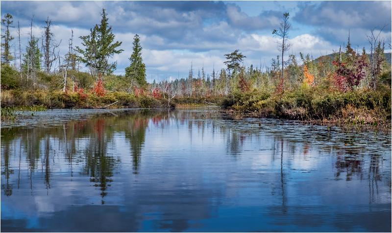 Adirondacks Middle Saranac Lake South Creek 3 September 2018