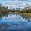 Adirondacks Middle Saranac Lake South Creek 8 September 2018