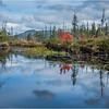Adirondacks Middle Saranac Lake South Creek 10 September 2018