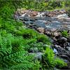 Adirondacks Stone Bridge Trout Brook 16 June 2018