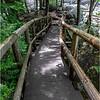 Adirondacks Stone Bridge Trout Brook 2 June 2018