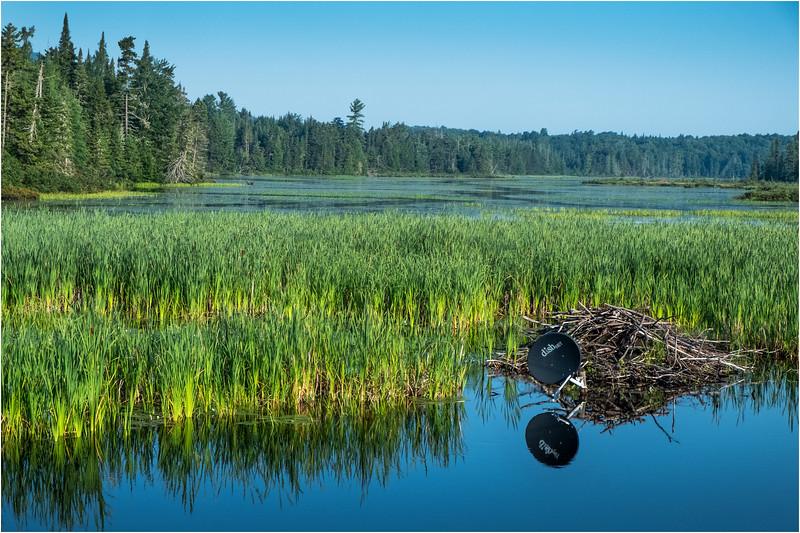 Adirondacks Deer River Flow 14 August 2018