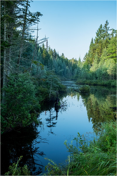 Adirondacks Deer River Flow 4 August 2018