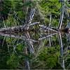 Adirondacks Seventh Lake Morning 83 September 2018
