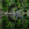 Adirondacks Seventh Lake Morning 88 September 2018