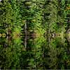 Adirondacks Seventh Lake Morning 21 September 2018