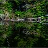 Adirondacks Seventh Lake Morning 37 September 2018