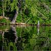 Adirondacks Seventh Lake Morning 66 September 2018