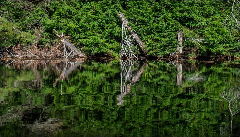 Adirondacks Seventh Lake Morning 30 September 2018