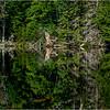 Adirondacks Seventh Lake Morning 28 September 2018