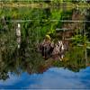 Adirondacks Seventh Lake Morning 98 September 2018