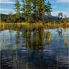 Adirondacks Seventh Lake Morning 64 September 2018