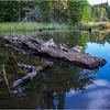 Adirondacks Seventh Lake Morning 73 September 2018