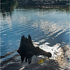 Adirondacks Seventh Lake Morning 50 September 2018