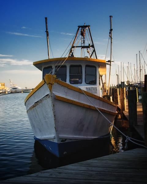 Harbor Side