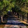 North Texas Road