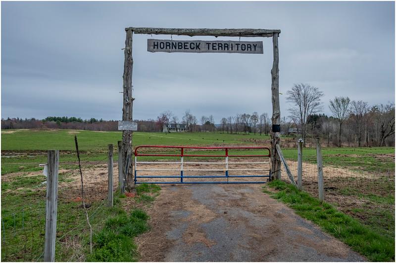 NY Wararsing Hornbeck 1 April 2019