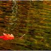 Adirondacks Lake Eaton Reflections 17 October 2019