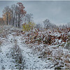 New York New Scotland First Snow 17 October 2020