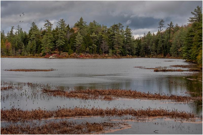 Adirondacks Bear Pond 1 October 2020