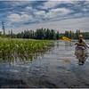 Adirondacks Bog River 7 Laurie Conney July 2020
