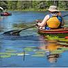 Adirondacks Bog River 1 July 2020
