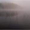 Adirondacks Rollins Pond Morning 28 August 2020