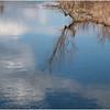 Voorheesville NY Black Creek Marsh 2 April 2020