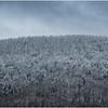 Voorheesville NY Heldeberg Escarpment 4 April 2020