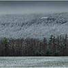 Voorheesville NY Heldeberg Escarpment 3 April 2020