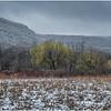 Voorheesville NY Heldeberg Escarpment 5 April 2020
