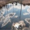 Voorheesville NY Black Creek Marsh 3 April 2020