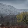 Voorheesville NY Heldeberg Escarpment 15 April 2020