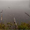 Adirondacks Tupper Lake 8 September 2020