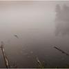 Adirondacks Tupper Lake 7 September 2020